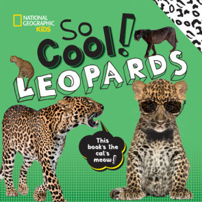 So Cool! Leopards