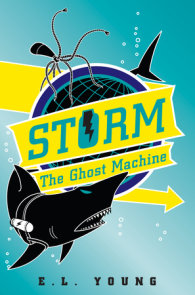 Storm: The Ghost Machine