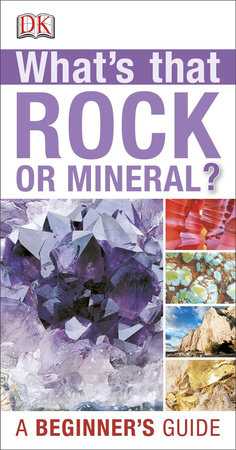 Whats that Rock or Mineral by DK