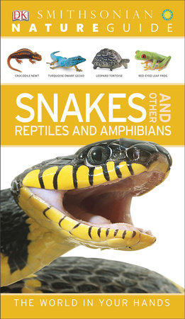 Nature Guide: Snakes and Other Reptiles and Amphibians by DK