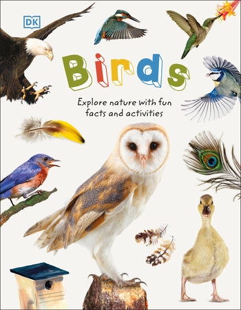 Birds by DK