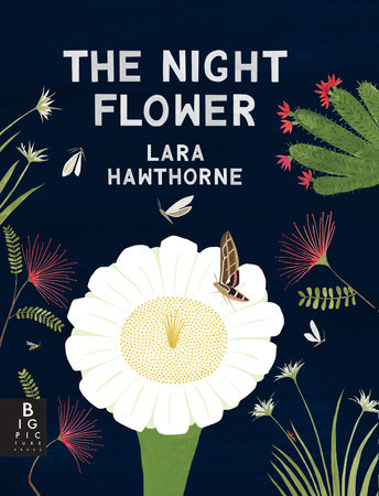 The Night Flower: The Blooming of the Saguaro Cactus by Lara Hawthorne