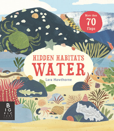 Hidden Habitats: Water by Lily Murray