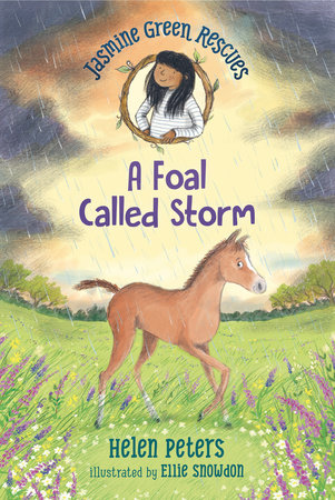 Jasmine Green Rescues: A Foal Called Storm by Helen Peters