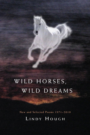 Wild Horses, Wild Dreams by Lindy Hough
