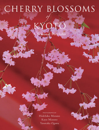 Cherry Blossoms of Kyoto by