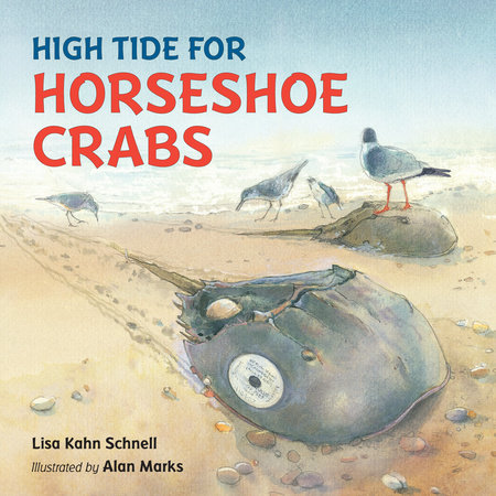 High Tide for Horseshoe Crabs by Lisa Kahn Schnell