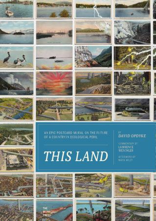 This Land by Lawrence Weschler and David Opdyke