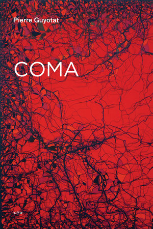 Coma by Pierre Guyotat