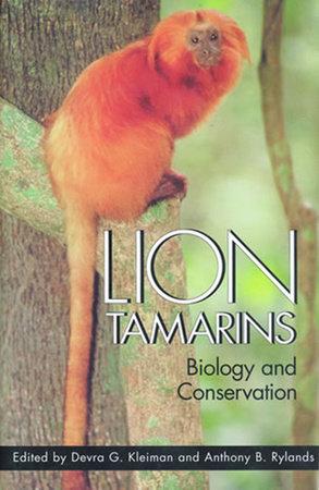 Lion Tamarins by
