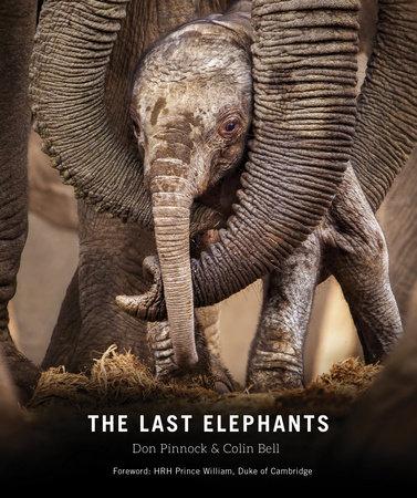 The Last Elephants | PenguinRandomHouse com: Books