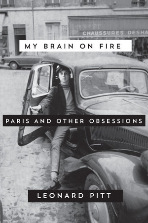 My Brain on Fire by Leonard Pitt