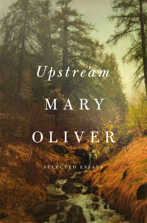 Upstream Book Cover Picture
