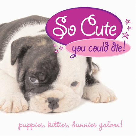 So Cute You Could Die! by Jennie Summers