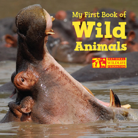 My First Book of Wild Animals (National Wildlife Federation) by National Wildlife Federation