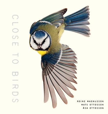 Close to Birds by Mats Ottosson and Asa Ottosson