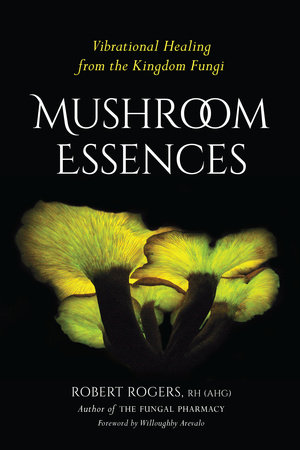 Mushroom Essences by Robert Rogers