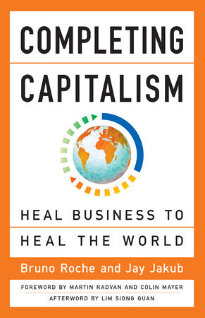 Completing Capitalism by Bruno Roche and Jay Jakub