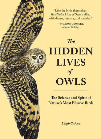 The Hidden Lives of Owls by Leigh Calvez