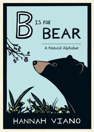 B Is for Bear by Hannah Viano