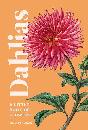 Dahlias by Tara Austen Weaver