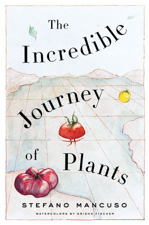 The Incredible Journey of Plants by Stefano Mancuso