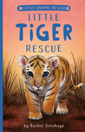 Little Tiger Rescue by Rachel Delahaye