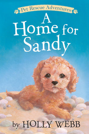 A Home for Sandy by Holly Webb