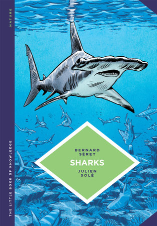 The Little Book of Knowledge: Sharks by Bernard Seret