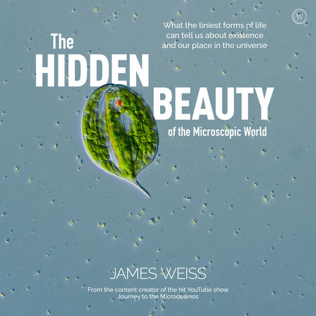 The Hidden Beauty of the Microscopic World by James Weiss