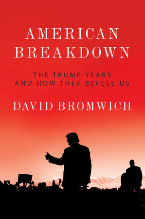 American Breakdown by David Bromwich