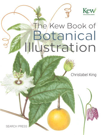 Kew Book of Botanical Illustration, The by Christabel King