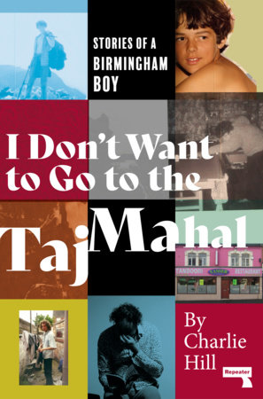 I Don't Want to Go to the Taj Mahal by Charlie Hill