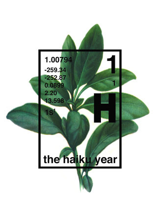 The Haiku Year by Michael Stipe, Douglas Martin, Grant Lee Phillips and Tom Gilroy