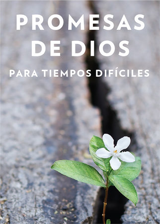 Promesas de Dios para tiempos difíciles / God s Promises when you are hurting by Jack Countryman