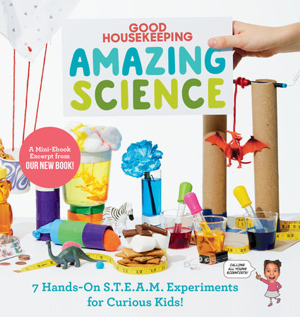 Good Housekeeping Amazing Science Free S.T.E.A.M. Experiment Sampler by Rachel Rothman