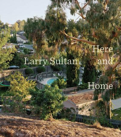 Larry Sultan by Rebecca Morse