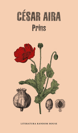 Prins (Spanish Edition) by Cesar Aira