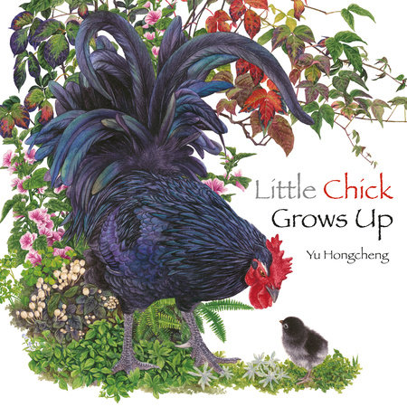 Little Chick Grows Up by Yu Hongcheng